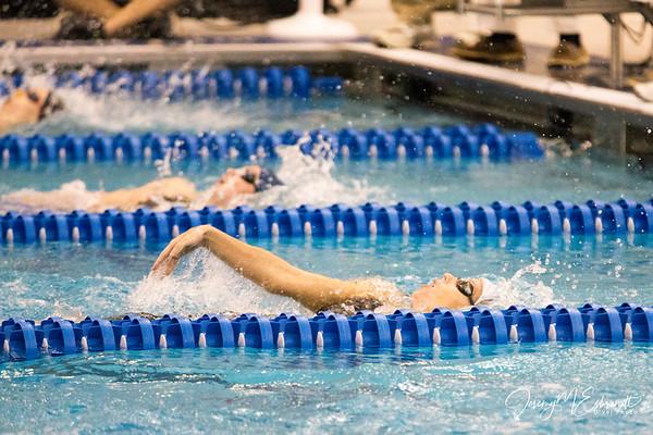 FSU Women's Swimming and Diving 02-22-14