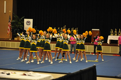 2014 Cheer Competition 003