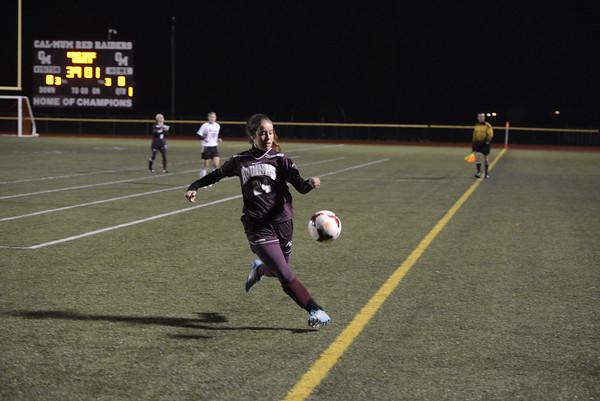 2014 Aquinas soccer Section V Class B championship