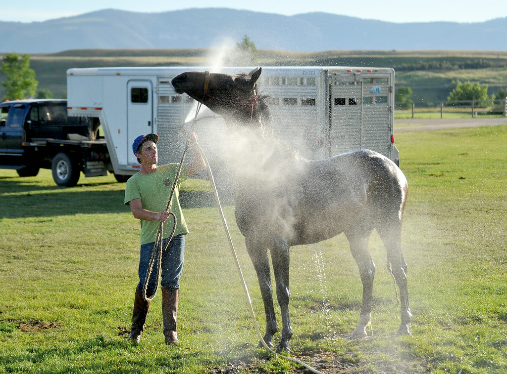 Ethan Galis sprays down his horse after conducting polo lessons on Tuesday at the Big Horn Polo Club. The Sheridan Press|Mike Pruden