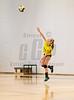 High School Junior Varsity Volleyball. Vestal Golden Bears at Corning Hawks. October 14, 2014.