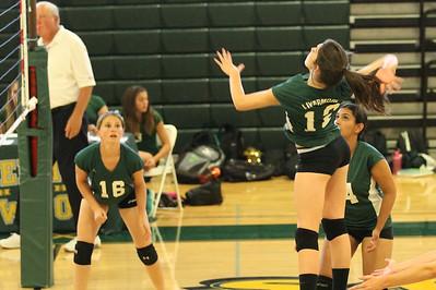2014 LHS volleyball JV
