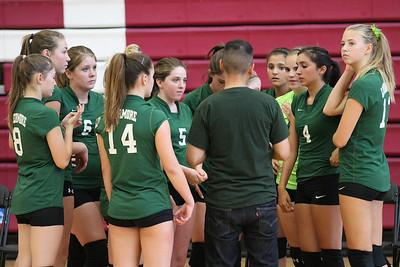 2014 LHS volleyball freshmen