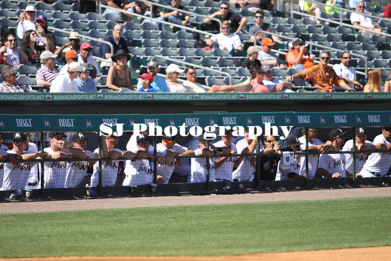 Miami Marlins players look on to the field