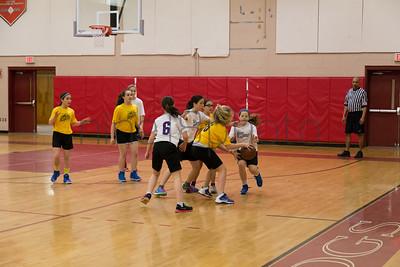 MarionRecGirlsBasketballChampionshipMercuryShock2014-19