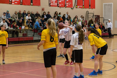 MarionRecGirlsBasketballChampionshipMercuryShock2014-30