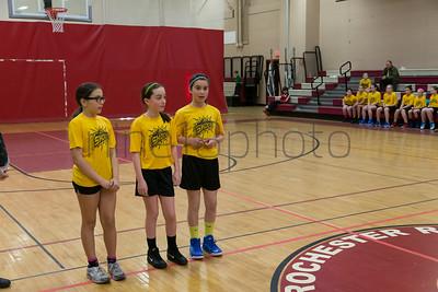 MarionRecGirlsBasketballChampionshipMercuryShock2014-8