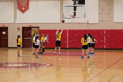 MarionRecGirlsBasketballChampionshipMercuryShock2014-27