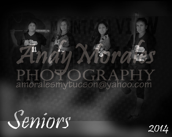 2014 Mountain View Softball Team Photos