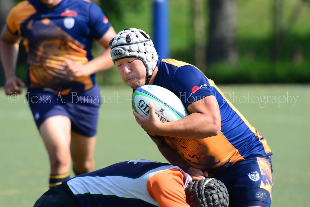 20140920_0201_GothamVsNY Rugby-a