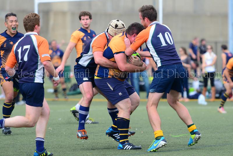 20140920_0436_GothamVsNY Rugby-a