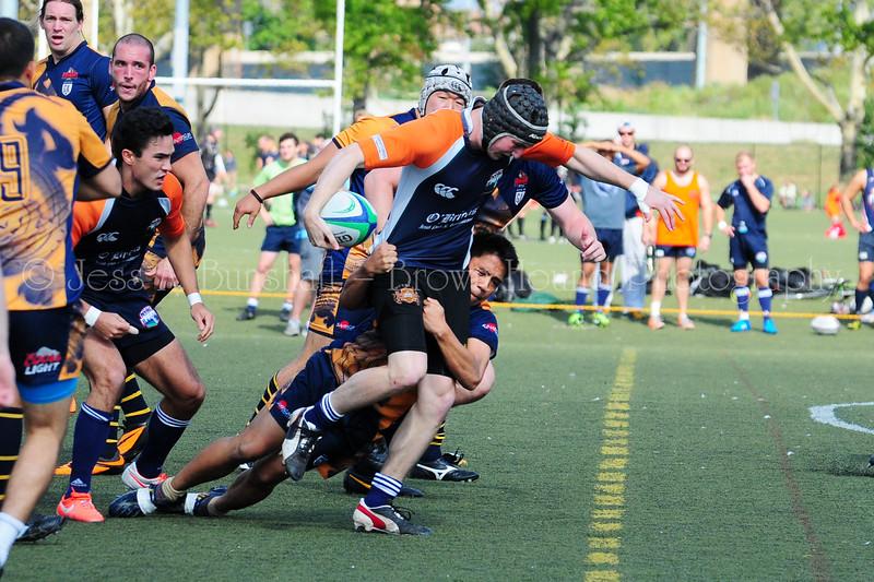 20140920_0009_GothamVsNY Rugby-a