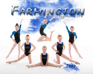 Farmington Gymnastics 2014