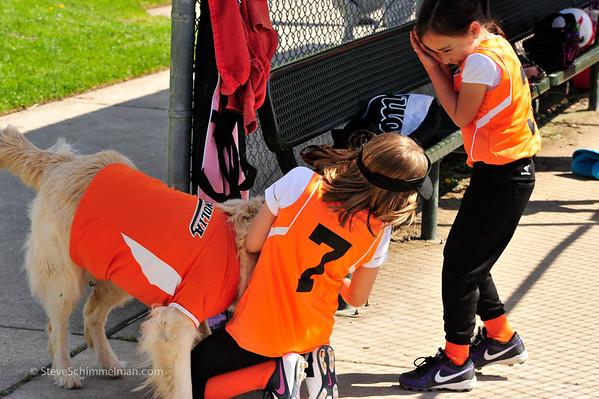 2014 Team Albert Lee Girls Softball