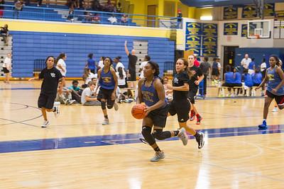 2014 Vista Ridge women's basketball