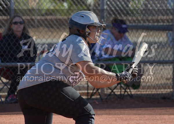 2014 softball Mountain View Rincon