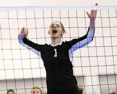 2014-03-30 Viterbo Volley Ball at Milwaukee