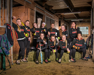 2014 Avalanche Fastpitch - Team Honey Badger, 16u
