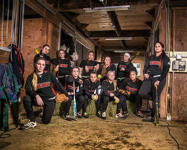 2014 Avalanche Fastpitch - Team Honey Badger, 16u