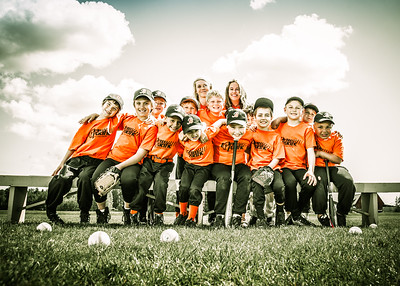 2014 Blaine Youth Baseball and Fastpitch