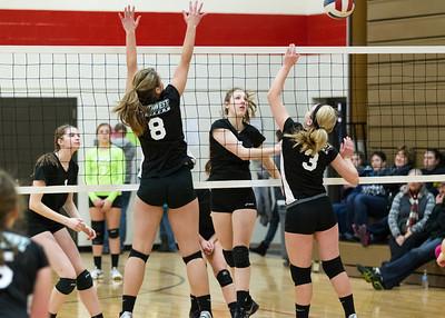 2014 V-Hawks Volleyball at Logan