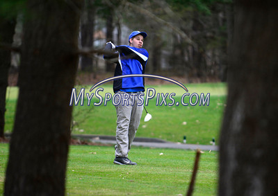 Golf 2014 Various Teams