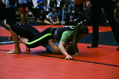 F2W WGC Texas State Championship Women's Divisions
