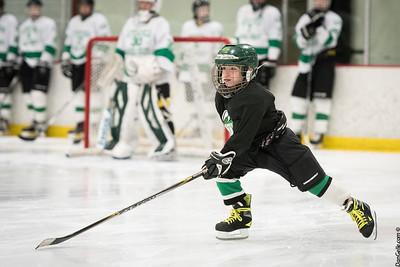 LDC Boys Hockey vs New Ulm