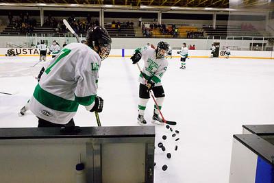 LDC Boys Hockey vs Hutchinson Tigers Section 3a Semi-Finals