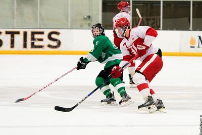 LDC Boys Hockey vs Luverne Cardinals Section 3A Championship