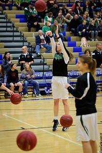 Litchfield Dragons Girls Basketball vs Annandale Section Playoffs