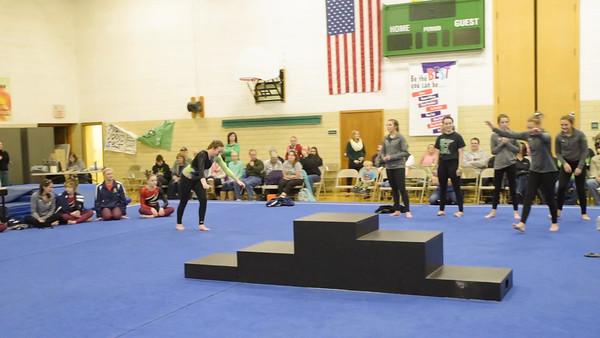 Litchfield HS Dragons Gymnastics