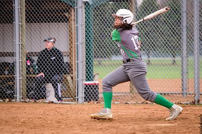 LHS Dragons Softball