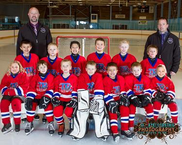 2015-16 TR Hockey Novice