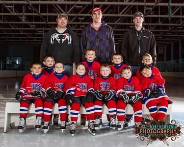 2015-16 TR Hockey Pre-Novice