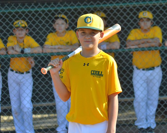 2015 CDO Little League Team Photos