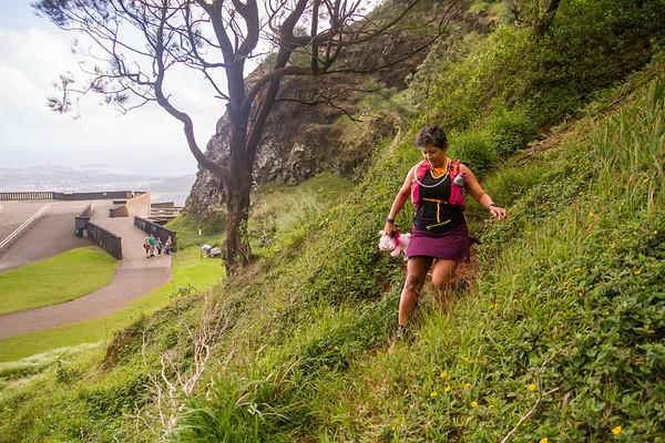 2015-08-08-HURT-Maunawili-Out-And-Back-Run-With-The-Pigs-0866