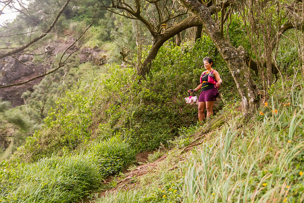 2015-08-08-HURT-Maunawili-Out-And-Back-Run-With-The-Pigs-0862