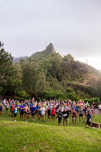 2015-08-08-HURT-Maunawili-Out-And-Back-Run-With-The-Pigs-0837