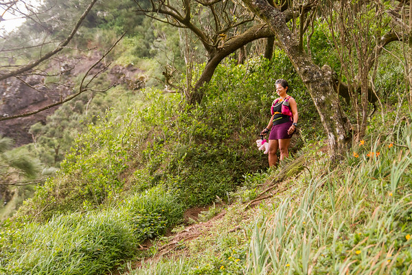2015-08-08-HURT-Maunawili-Out-And-Back-Run-With-The-Pigs-0861