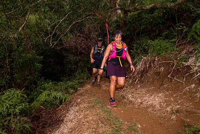 2015-08-08-HURT-Maunawili-Out-And-Back-Run-With-The-Pigs-1203