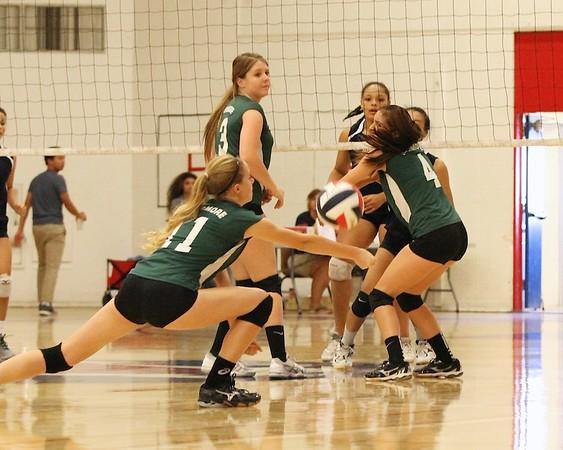 LHS Volleyball JV