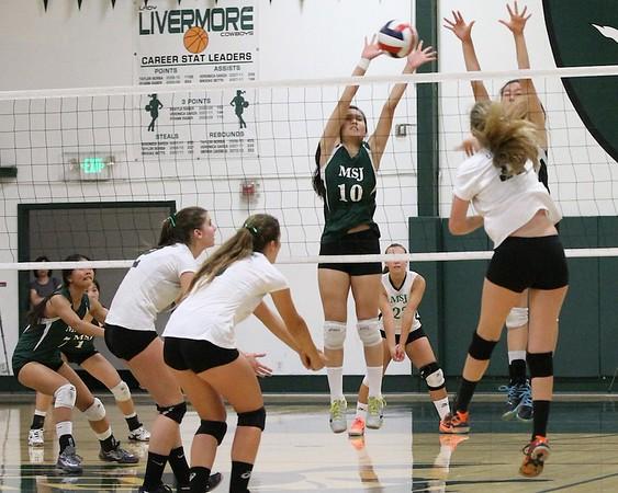 LHS Volleyball Varsity