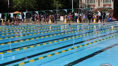 Emilia (lane 4, blue cap in the middle of pool) swims the 50 Meter Freestyle at the NYC Parks Swim Championship, at Pitt Street Pool, on Saturday August 15, 2015.