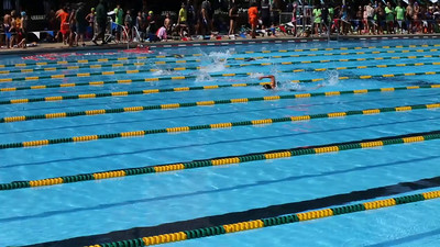 Jason, (lane 2) second from the top, swims the 50 meter Freestyle at NYC Parks Swim Championship, at Pitts St. Pool on Saturday August 15, 2015