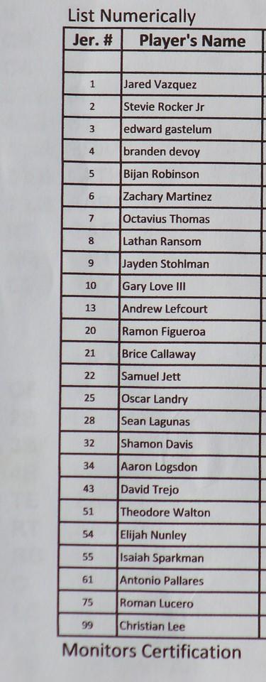 2015 TYF 13U Broncos Dolphins