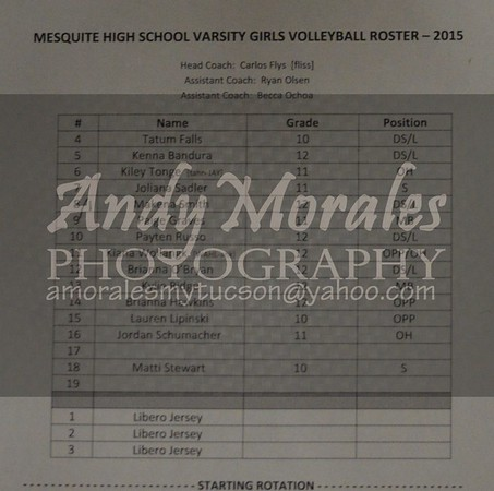 2015 girls volleyball mountain view mesquite