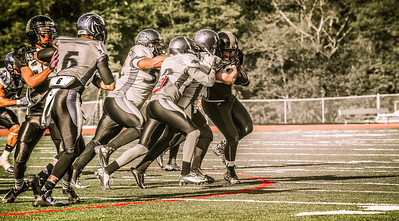 Bellingham BullDogs 2015