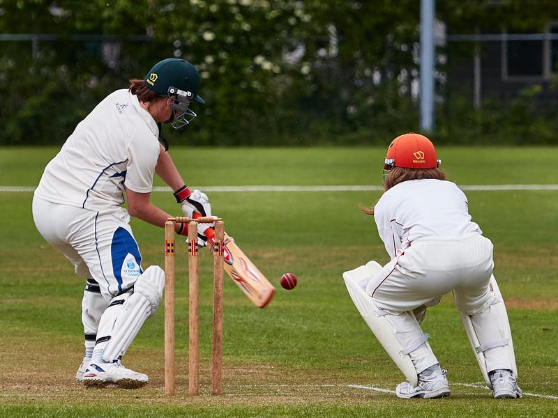 20150620 Kampong Cricket Festival img 018