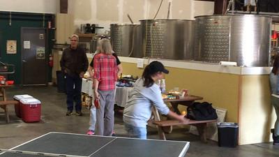 20151003 - Elite Spas Ping Pong